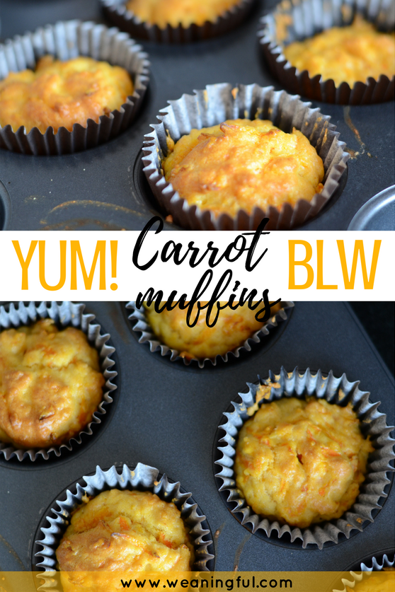 carrot muffins baby led weaning recipe