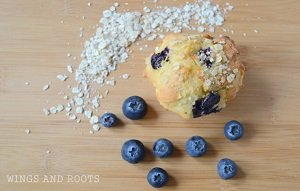 blueberry banana oat muffins baby led weaning breakfast ideas finger food first foods