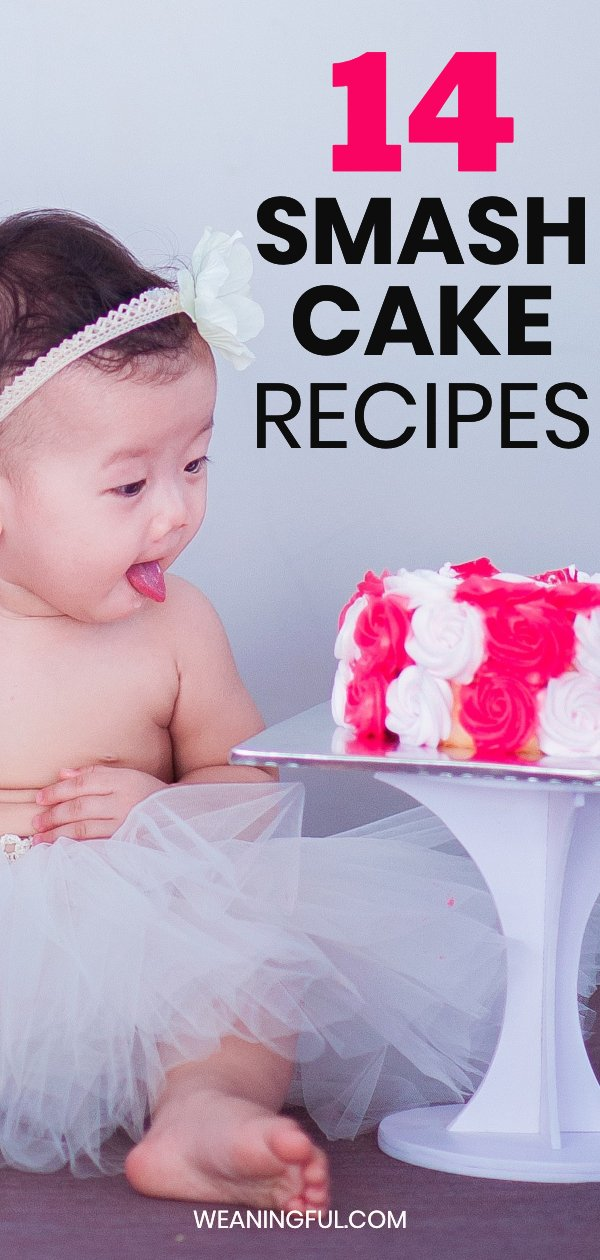 Do you have a 1st birthday coming up? This post has 14 healthy mash cake ideas for your baby's or toddler's birthday.