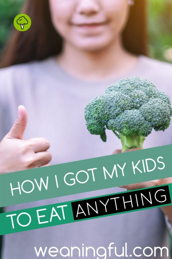 Find out how I got my toddler and pre-schooler to try any food, after previously rejecting it.