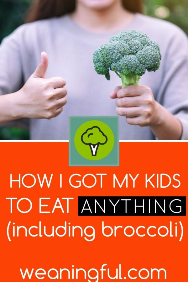 """What kids eat when they're young sets the foundations for healthy habits later in life. Find out how to get your child to at least try new foods or rejected foods, without bribing, pressure or """"one more bite"""" rules."""