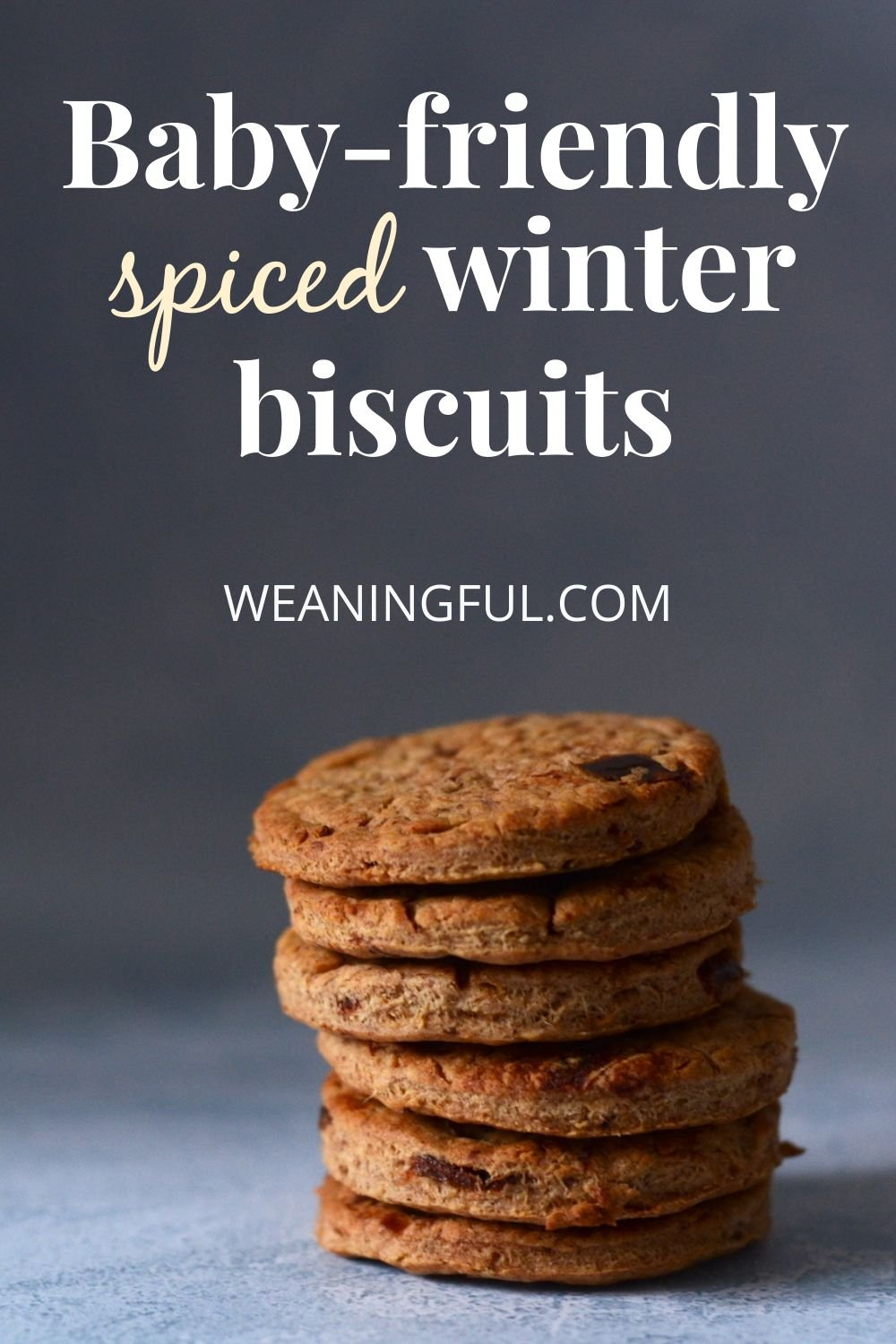 These baby-friendly spiced winter biscuits are a great alternative to gingerbread and sugar-free too. You can make these with your kids and enjoy eating them together as Christmas cookies why not?