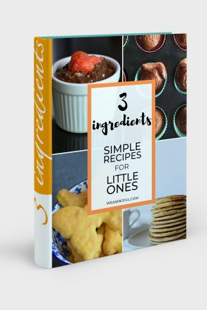 3 ingredients baby led weaning cookbook