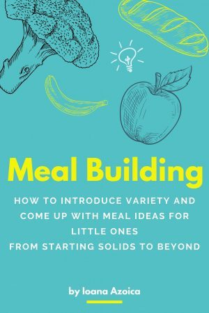 Meal Building cover print
